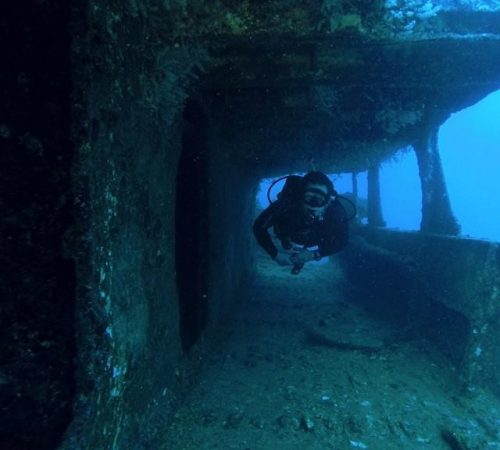 Exploring_the_Sea_Tiger_with_Dave_southSide
